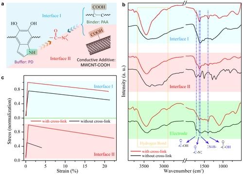 硫纳米片透射电镜表征