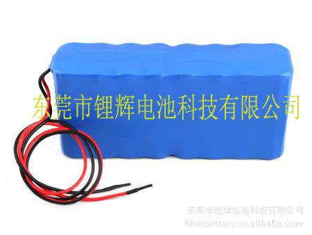 锂辉电池公司的磷酸铁锂电池产品