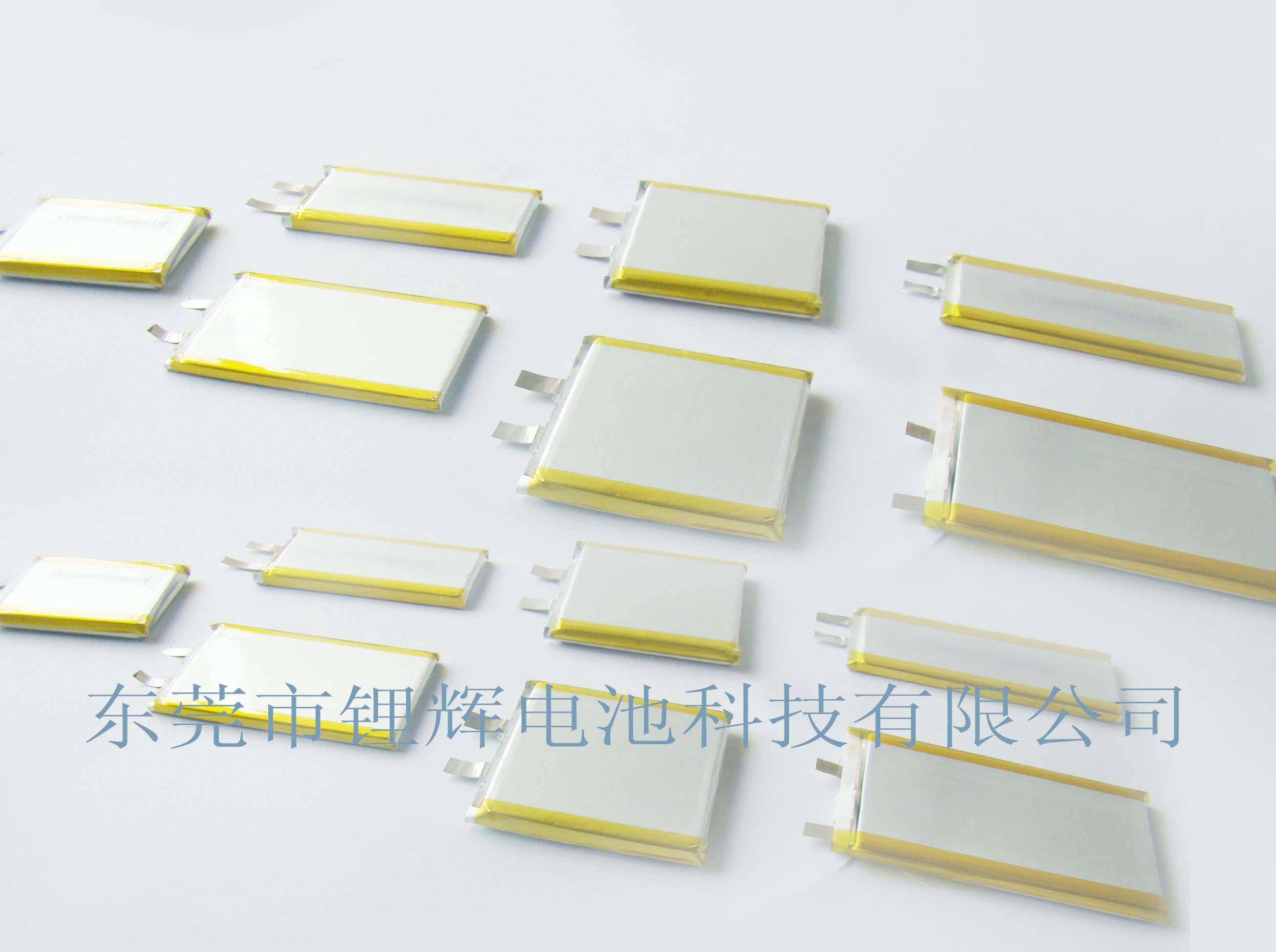 锂辉电池公司的聚合物锂电池产品图