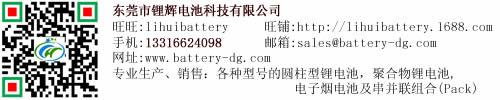东莞市锂辉电池科技有限公司