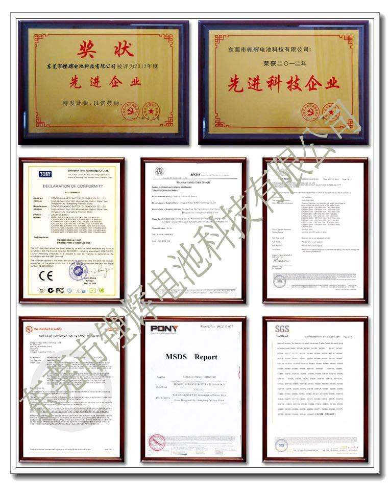 东莞市锂辉电池科技有限公司品质认证证书